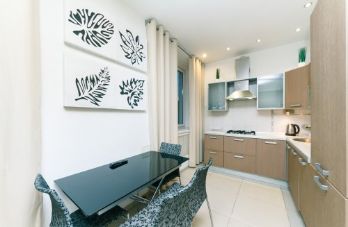 Rent stylish 1 bedroom apartment in Kiev at Lesi Ukrainky 6 studio-kitchen