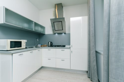 Rent 1 bedroom apartment with modern kitchen in Kyiv at Blvd Lesi Ukrainky 8