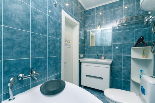 Rent nice 1 bedroom apartment in Kyiv with a big bathroom Lesi Ukrainky