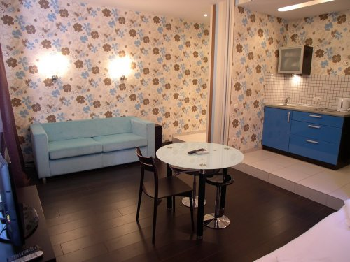 Rent studio lux apartment in Kiev Shota Rustaveli 10 near Kreschatyk