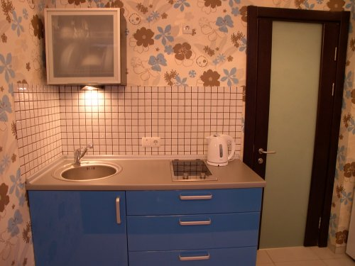 Rent studio lux apartment in Kiev Shota Rustaveli 10 near Baseina
