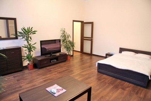 Rent studio lux apartment in Kiev Tolstoho 41 Botanical Garden