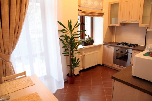 Rent studio lux apartment in Kiev Tolstoho 41 Velur